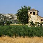 Andalucia Country by Alex Rentzis