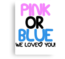 Pink or Blue Baby Gender Reveal Canvas Print