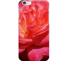Big Red Pink Rose Flowers Art Prints Roses iPhone Case/Skin