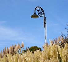 Ammonite Lamp and Pampas Grass.......... by lynn carter