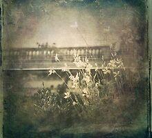 Vintage Garden by VictoriaHerrera