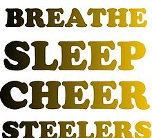 STEELERS FOOTBALL by Divertions