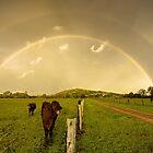 Cowbow by Lanny Edey