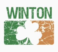 Winton Surname Irish by surnames