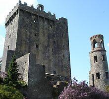 Blarney Castle 2 by mbgordon