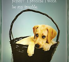 Puppy Love by Kenneth Hoffman