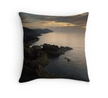 They came from the west Throw Pillow