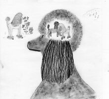 Standard Poodle's  Quantum Physics by theopenporch