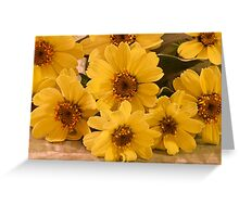 Yellow Toto Lemon Rudbeckia Greeting Card