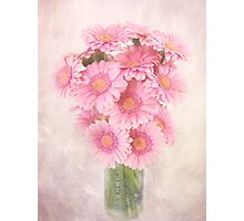 Staggered Bouquet of Pink Gerbera Daisies Photographic Print