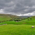 Yorkshire Dales View by Trevor Kersley