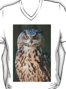 owl in the mountains T-Shirt