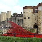 A Carpet of Flowers for the Tower of London by karina5