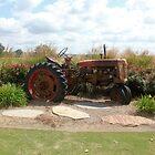 Vintage Tractor by DebbieCHayes