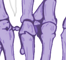 Skeleton hand | Lilac Sticker