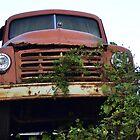 Old Truck by Karl F Davis