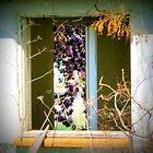 Two Window's by trueblvr