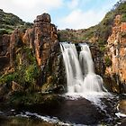 Quininup Falls by Stephen  Nicholson