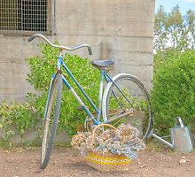 Watering the garden..... old bicycle... by mitpjenkeating