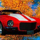 "Autumn ""Zedder"" by sundawg7"
