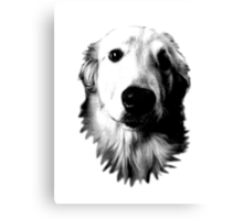 Who Me? Funny Dog Expressions. Golden Retriever Images. Canvas Print