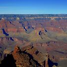Grand Canyon  by Charmiene Maxwell-batten