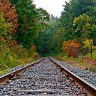 Railroad track 1 by Carolyn Clark
