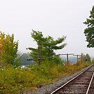 Railroad track 2 by Carolyn Clark