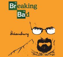 Breaking Bad - Heisenburg by clearspace80