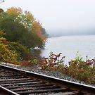 Railroad track 3 by Carolyn Clark