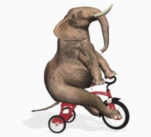 Elephant On Red Tricycle Kids Clothes