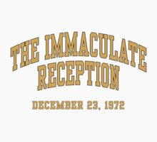 The Immaculate Reception Kids Clothes