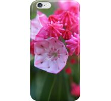 Flower in the shape of decorative frosting - 2011 iPhone Case/Skin