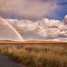 Wicklow Rainbow by indiabluephotos