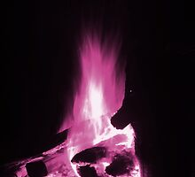 Pink Flame Rising by TrueheartPhoto