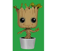Groovy Groot Photographic Print