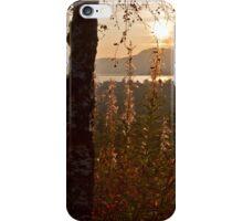 Wildflowers in the Glen iPhone Case/Skin