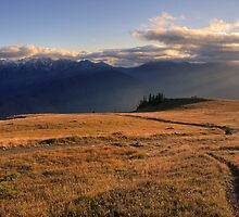 09-03-14 - Sunbeams on Hurricane Hill and Mount Carrie, Olympic National Park, Washington by DArthurBrown