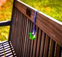 Baby Pacifier on Park Bench by pjm286