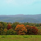 Fall Foilage In Mountains of Pennsylvania by Geno Rugh