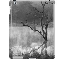 Mystic Morning! iPad Case/Skin