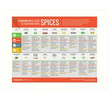 Cook Smarts' Guide to Enjoying Spices Art Print