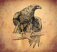 Falcon on branch digital illustration by Thubakabra