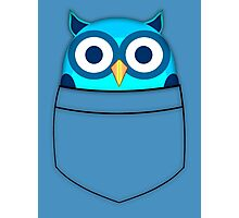 Pocket owl Photographic Print