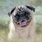 Venus the Pug ~ Goddess of Love & Beauty by Susan Werby