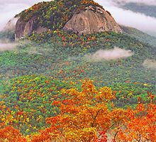 LOOKING GLASS ROCK by Chuck Wickham