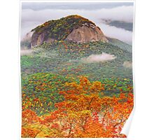 LOOKING GLASS ROCK Poster