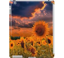 Sunflowers Field  iPad Case/Skin