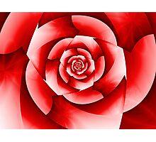 Rosie Red Photographic Print