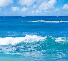 Beautiful Pacific Ocean's landscape  by ellensmile